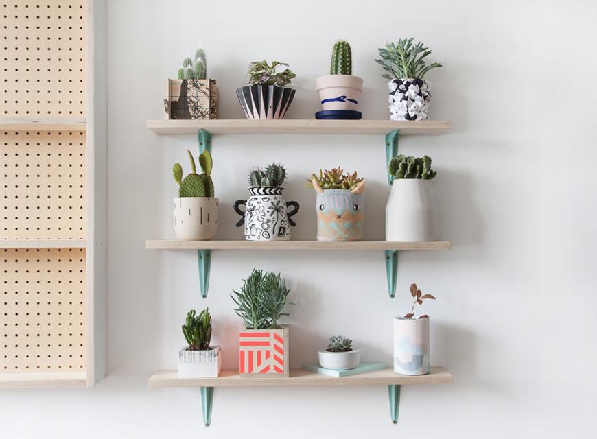 plantpot_smug